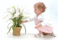 Виды ядовитых растений, опасных для детей.