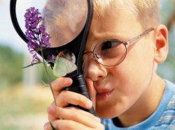 Как оградить детей от ядовитых растений во время летней поездки.